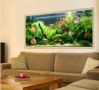Acvariul tablou un mod neobisnuit de amenajare cu plante si pesti